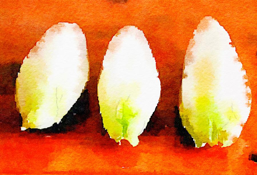 Barchette di belga con robiola ai tre pepi