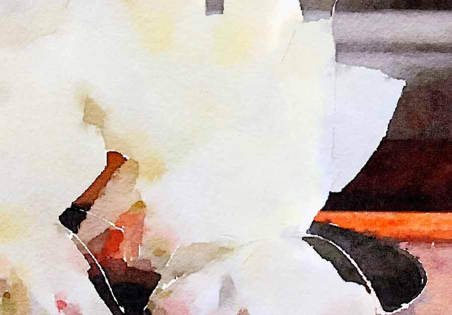 Cartoccio di polenta con prosciutto, formaggio e funghi alle erbe