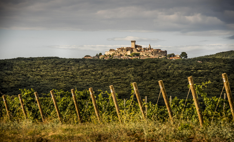 Una famiglia del vino tra Germania e Toscana