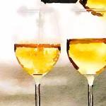 vino_oltrepo