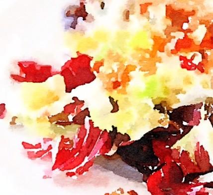 Insalata di radicchio rosso e spinaci con pere e noci